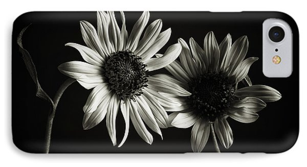Sunflowers In Soft Light IPhone Case by Jesse Castellano