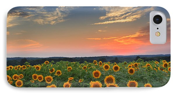 Sunflowers In The Evening Phone Case by Bill Wakeley