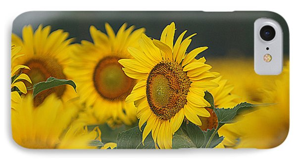 IPhone Case featuring the photograph Sunflowers by Kathy Churchman
