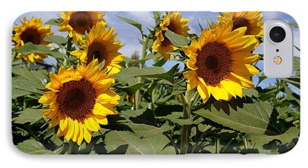 Sunflowers Phone Case by Kerri Mortenson