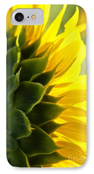 Sunkissed IPhone Case by Lee Craig