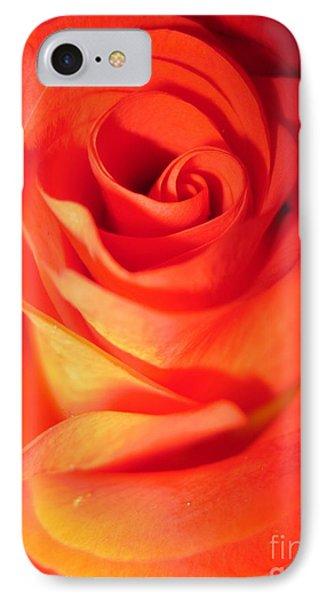 Sunkissed Orange Rose 10 IPhone Case