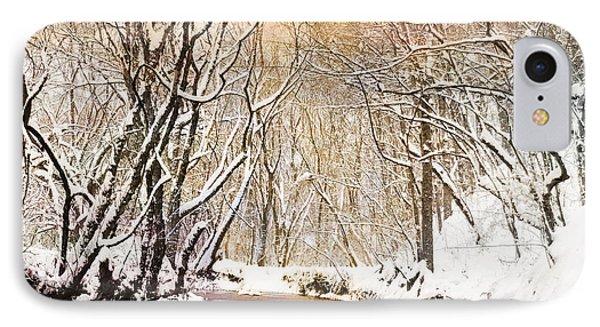 Sunkissed Winter Creek Phone Case by Jai Johnson