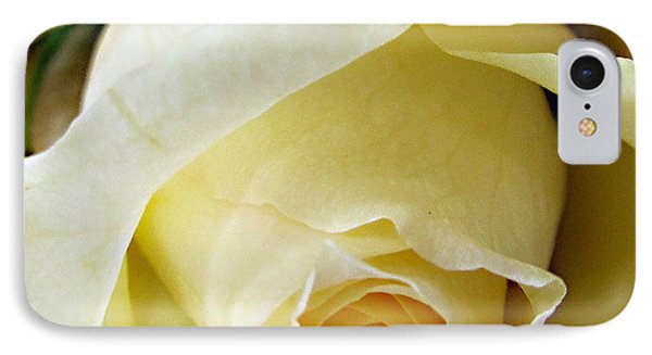 Sunkissed Yellow Rose IPhone Case by Danielle  Parent