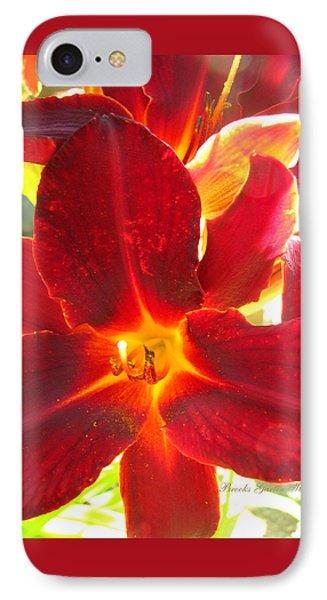 IPhone Case featuring the photograph Sunlight And Daylilies A Match Made In Heaven by Brooks Garten Hauschild