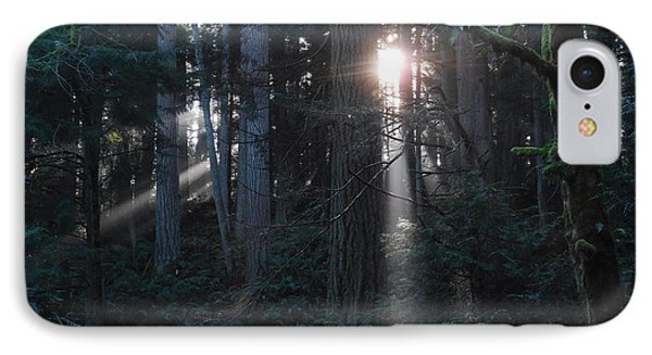 Sunlight In The Forest IPhone Case