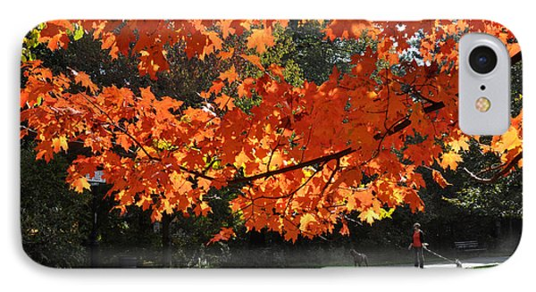 Sunlight On Red Maple Leaves IPhone Case by Diane Lent