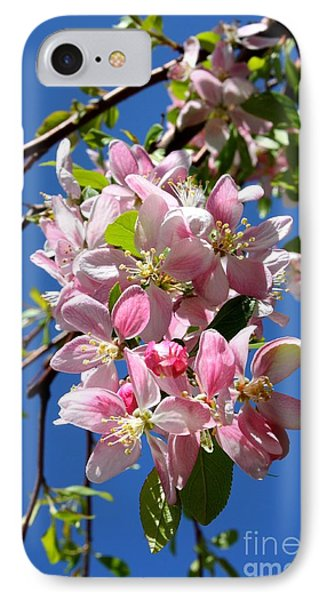Sunlight On Spring Blossoms Phone Case by Carol Groenen