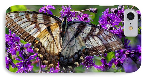 IPhone Case featuring the photograph Sunlight On Swallowtail by Beth Akerman