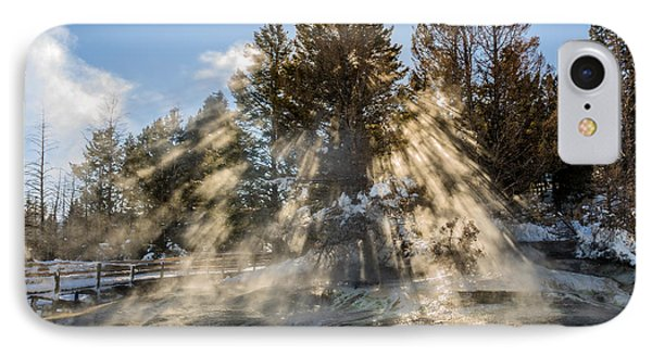 Sunlight Through The Trees 2 Phone Case by Sue Smith