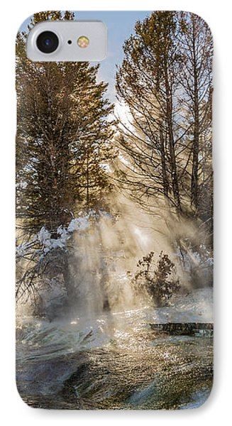 Sunlight Through The Trees Phone Case by Sue Smith
