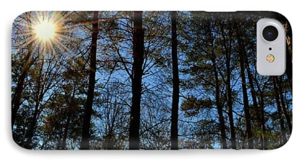 IPhone Case featuring the photograph Sunlight Through Trees by Tara Potts