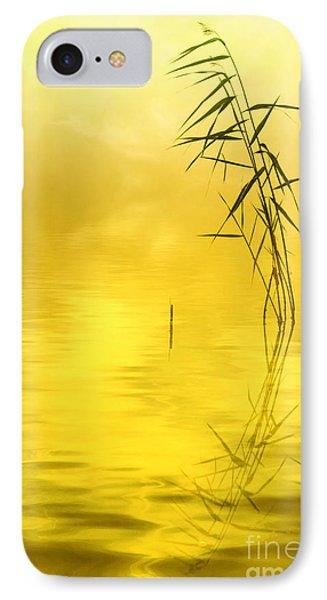 Sunlight IPhone Case by Veikko Suikkanen