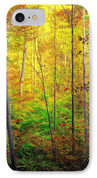 Sunlights Warmth Phone Case by Frozen in Time Fine Art Photography