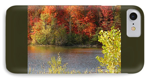IPhone Case featuring the photograph Sunlit Autumn by Ann Horn