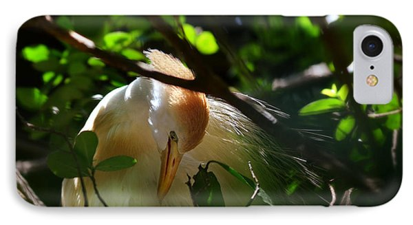 Sunlit Egret IPhone Case