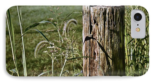Sunlit Fence Post - 2 IPhone Case by Greg Jackson