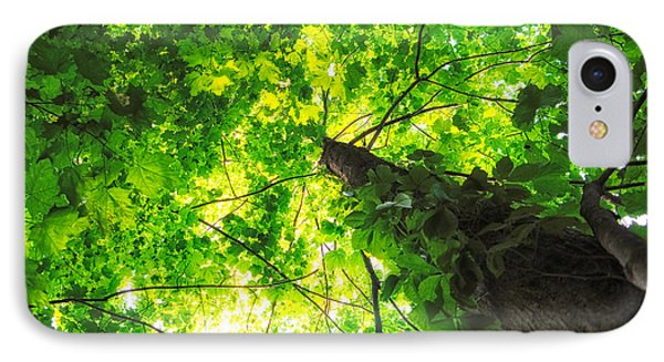 Sunlit Leaves IPhone Case by Lars Lentz