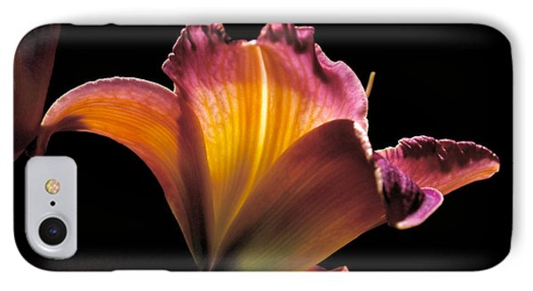 Sunlit Lily Phone Case by Rona Black