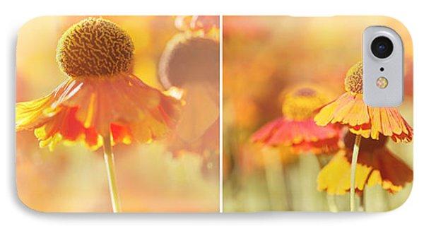 Sunlit Orange Helenium Flowers Triptych IPhone Case by Natalie Kinnear