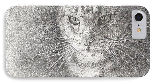 Sunlit Tabby Cat IPhone Case