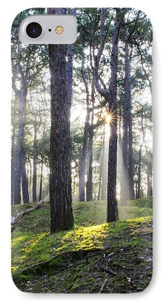Sunlit Trees IPhone Case