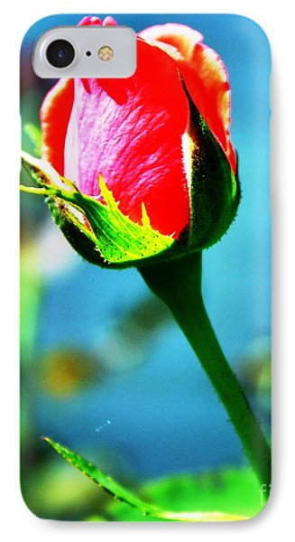 Sunlite Rose Bud IPhone Case by Judy Palkimas