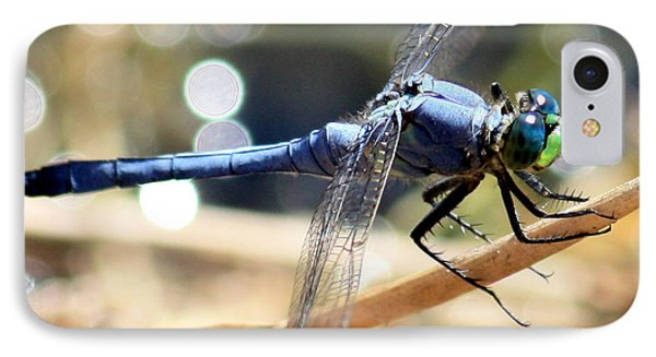 Sunning Blue Dragonfly Square Phone Case by Carol Groenen