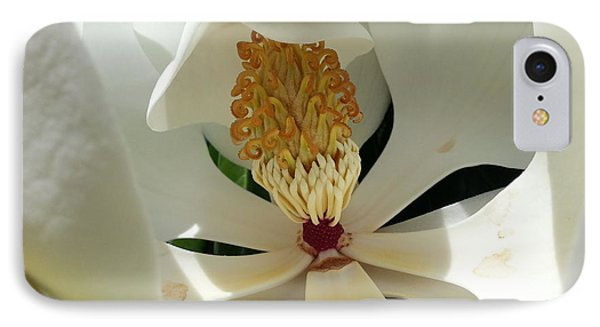 Sunny And Shy Magnolia IPhone Case