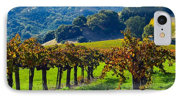 Sunny Autumn Vineyards IPhone Case