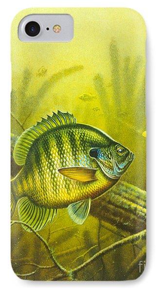 Sunny Day Panfish Phone Case by Jon Q Wright