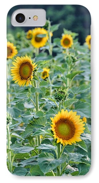 Sunny Faces Phone Case by Jan Amiss Photography