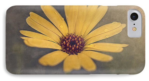Sunny IPhone Case by Faith Simbeck