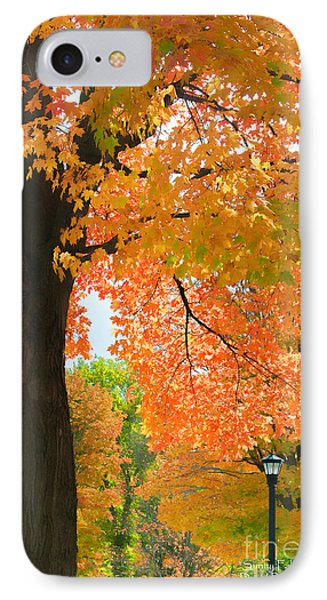 Sunny Fall Day By David Lawrence IPhone Case