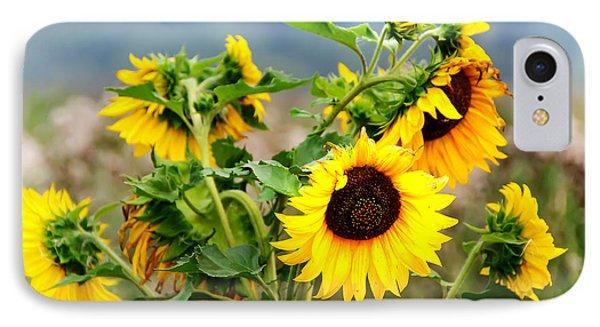 Sunny Meadow Phone Case by Jenny Rainbow