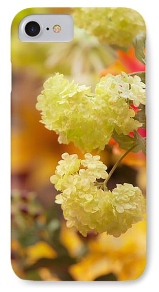 Sunny Mood. Amsterdam Flower Market IPhone Case by Jenny Rainbow
