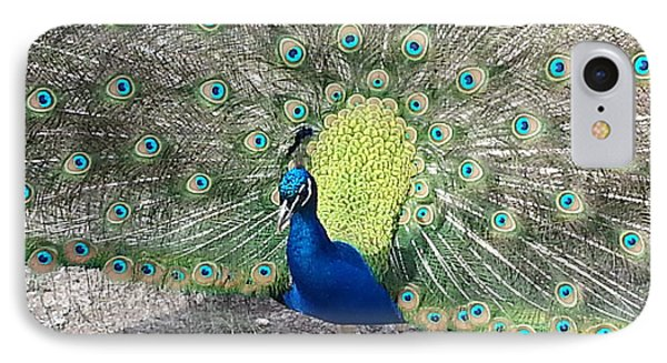IPhone Case featuring the photograph Sunny Peancock by Caryl J Bohn
