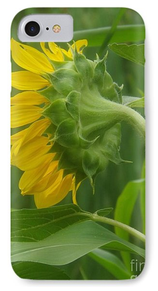 Sunny Profile IPhone Case by Sara  Raber