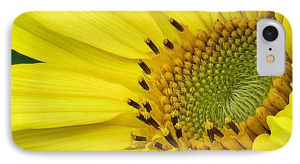 IPhone Case featuring the photograph Sunny Side Up by Janice Westerberg
