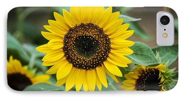 IPhone Case featuring the photograph Sunny Smile Sunflower by Phil Abrams