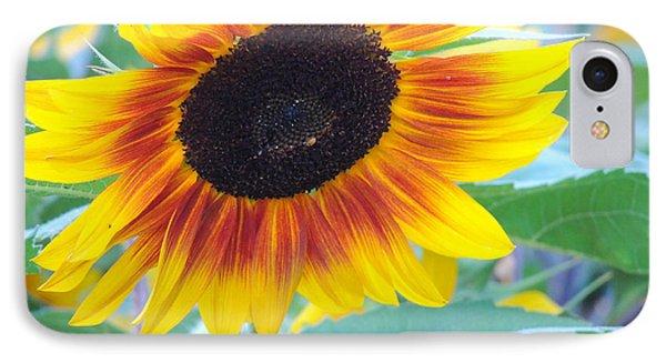 Sunny Sunflower IPhone Case