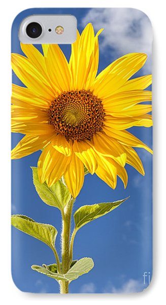 Sunny Sunflower Phone Case by Joshua Clark