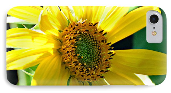 IPhone Case featuring the photograph Sunny Sunflower  by Lila Fisher-Wenzel