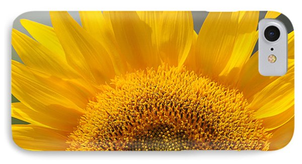 IPhone Case featuring the photograph Sunny Sunflower by Olivia Hardwicke