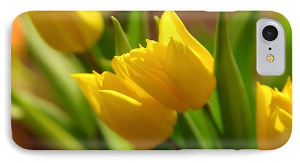 IPhone Case featuring the photograph Sunny Tulips by Erin Kohlenberg