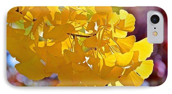 Sunny Yellow Ginkgo IPhone Case by Rita Mueller