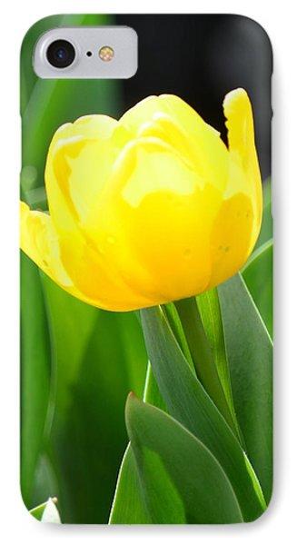 Sunny Yellow Tulip Phone Case by Maria Urso