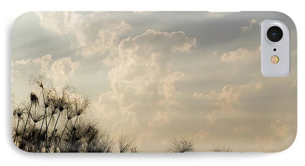 Sunrays Above Papyrus Plants, Okavango IPhone Case by Panoramic Images