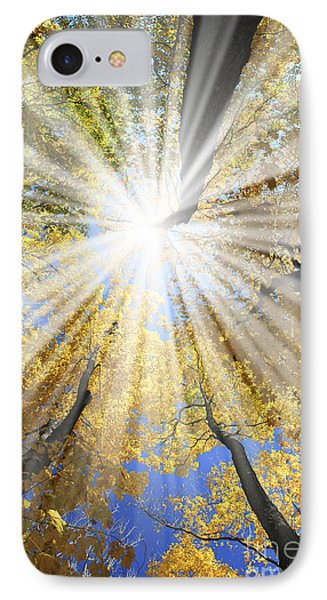 Sunrays In The Forest IPhone Case