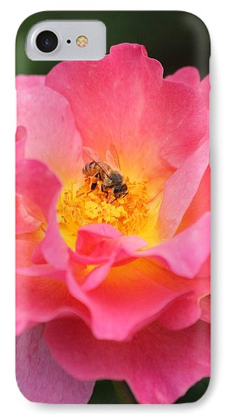 IPhone Case featuring the photograph Sunrise by Amy Gallagher
